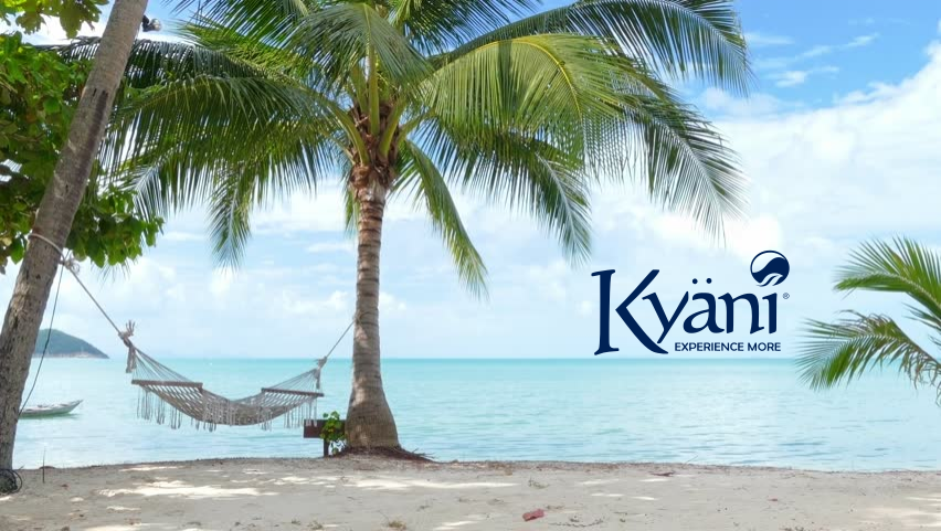 Kyani Business Opportunity